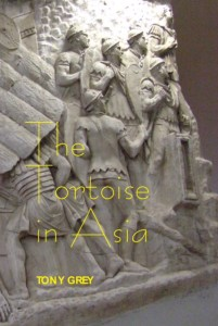 Tortoise in Asia front cover